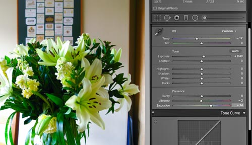 Screenshot from Adobe Lightroom. Use software to adjust your image and get it closer to your vision.